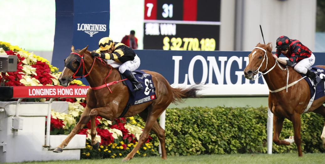 Longines Flat Racing Event: The Longines Hong Kong International Races:  four races, four chances to become a legend