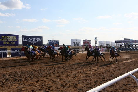 Longines Flat Racing Event: Longines at the China Equine Cultural Festival