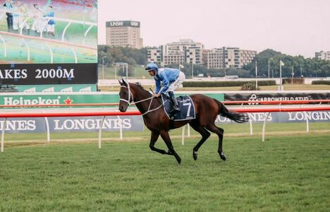 Longines Flat Racing Event: Unforgettable last victory of Winx at the Longines Queen Elizabeth Stakes