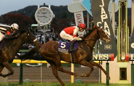 Longines Flat Racing Event: Suave Richard galloped to victory in the 2019 edition of the Japan Cup in association with Longines