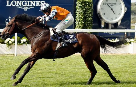 Longines Flat Racing Event: Game-changing Longines Tracking System served the King George Day