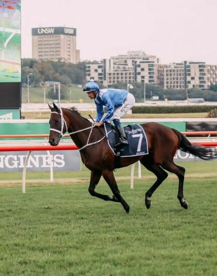 Unforgettable last victory of Winx at the Longines Queen Elizabeth Stakes