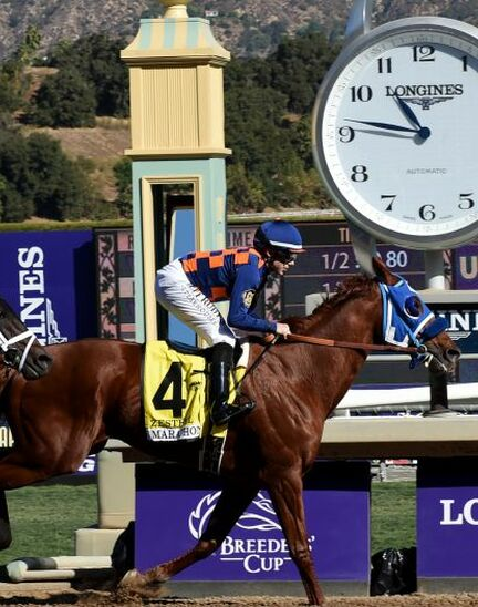 Longines timed the 36th Breeders' Cup World Championships