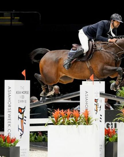 Nayel Nassar shines at the Longines Masters of New York