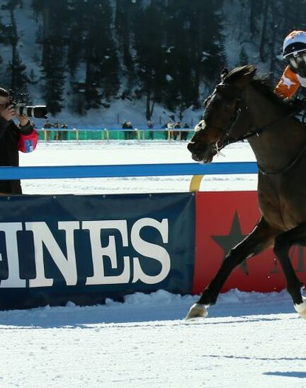 Three Sundays of exciting competitions and exceptional performances for the Longines 80. Grosser Preis von St. Moritz