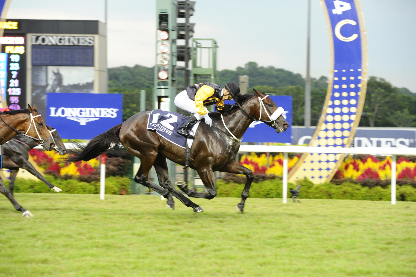 Longines Flat Racing Event: LONGINES SINGAPORE GOLD CUP 2014 RAISES S$241,616 FOR CHARITY (Singapore, SINGAPORE)  13