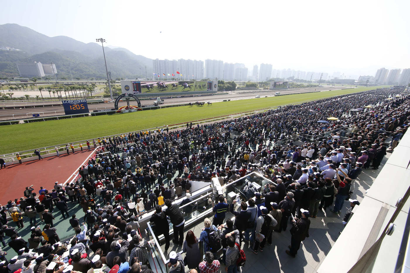 Longines Flat Racing Event: Longines Hong Kong International Races – where fervour meets elegance 4