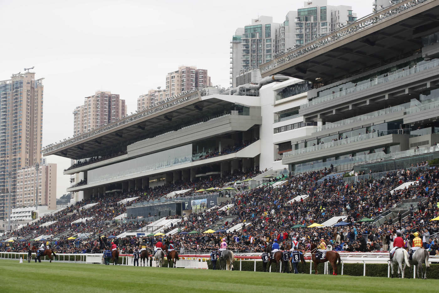Longines Flat Racing Event: The Longines Hong Kong International Races:  four races, four chances to become a legend 12