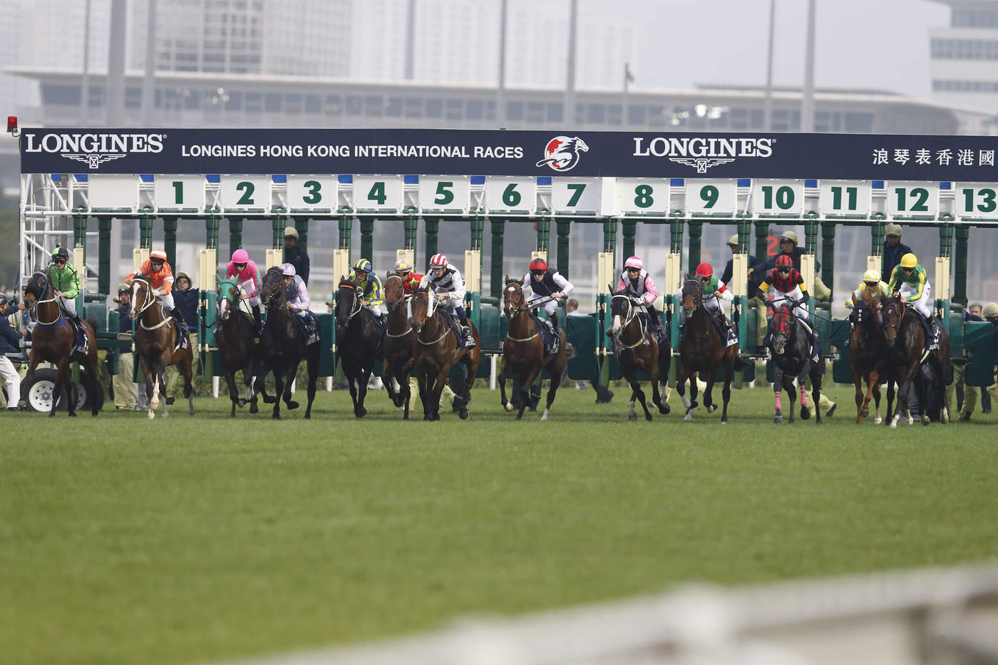 Longines Flat Racing Event: Longines Hong Kong International Races – a competitive climax of the horse racing calendar 3