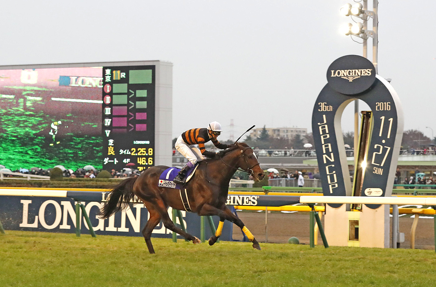 Longines Flat Racing Event: Kitasan Black and Yutaka Take caught the spotlight at 2016 Japan Cup in association with Longines  1