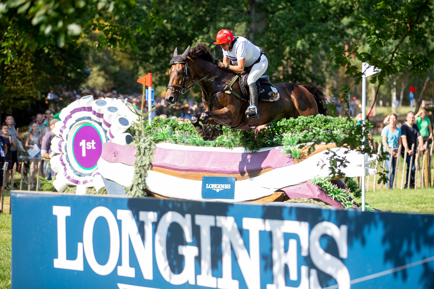 Longines Eventing Event: Team Germany claimed the 2019 Longines FEI Eventing European Championships crown in Luhmühlen 3