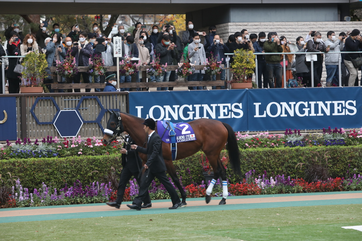 Longines Flat Racing Event: Almond Eye wins the 2020 Japan Cup in association with Longines  2