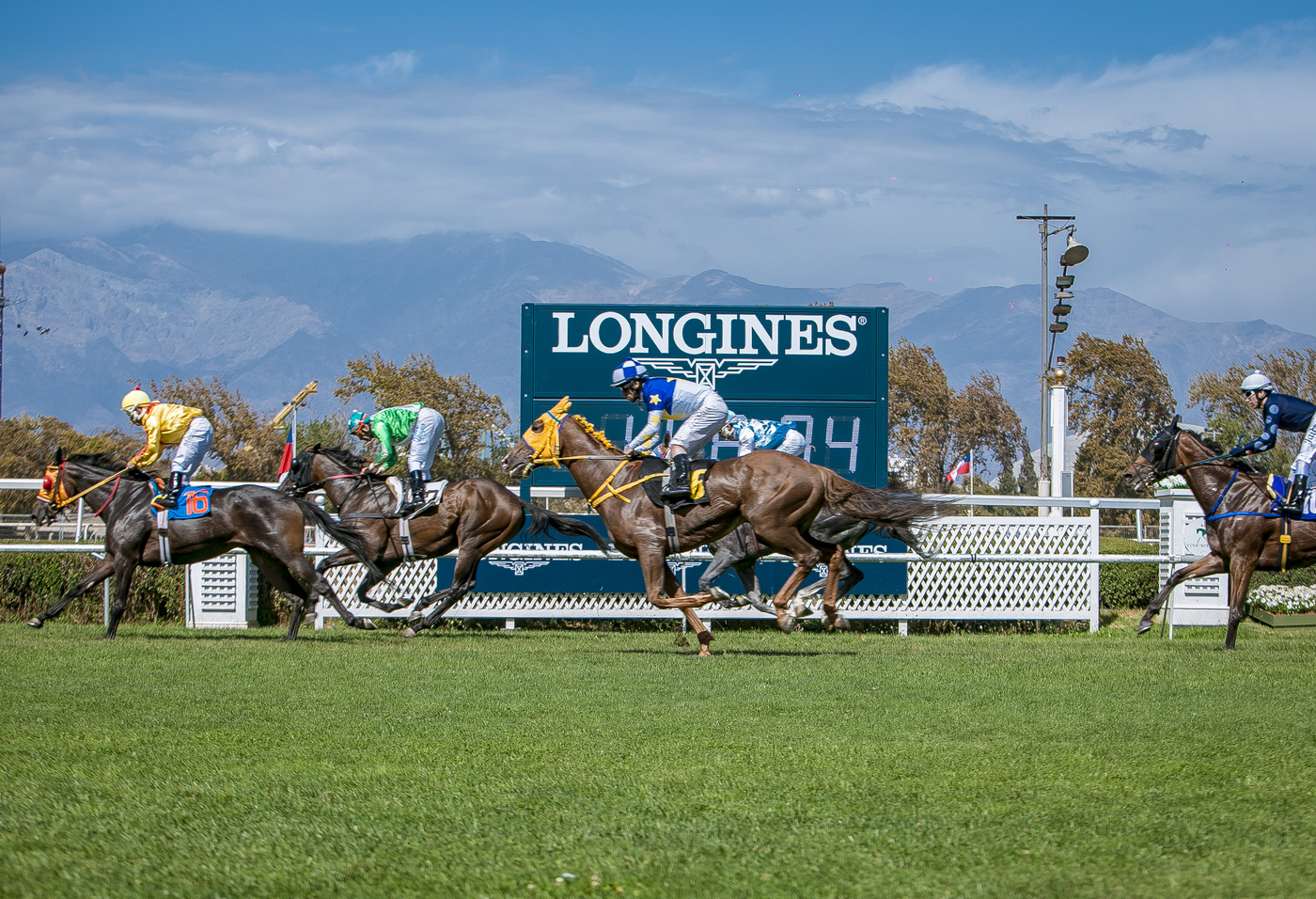 Longines Flat Racing Event: Ya Primo reigned supreme at the 2019 Longines Gran Premio Latinoamericano  6