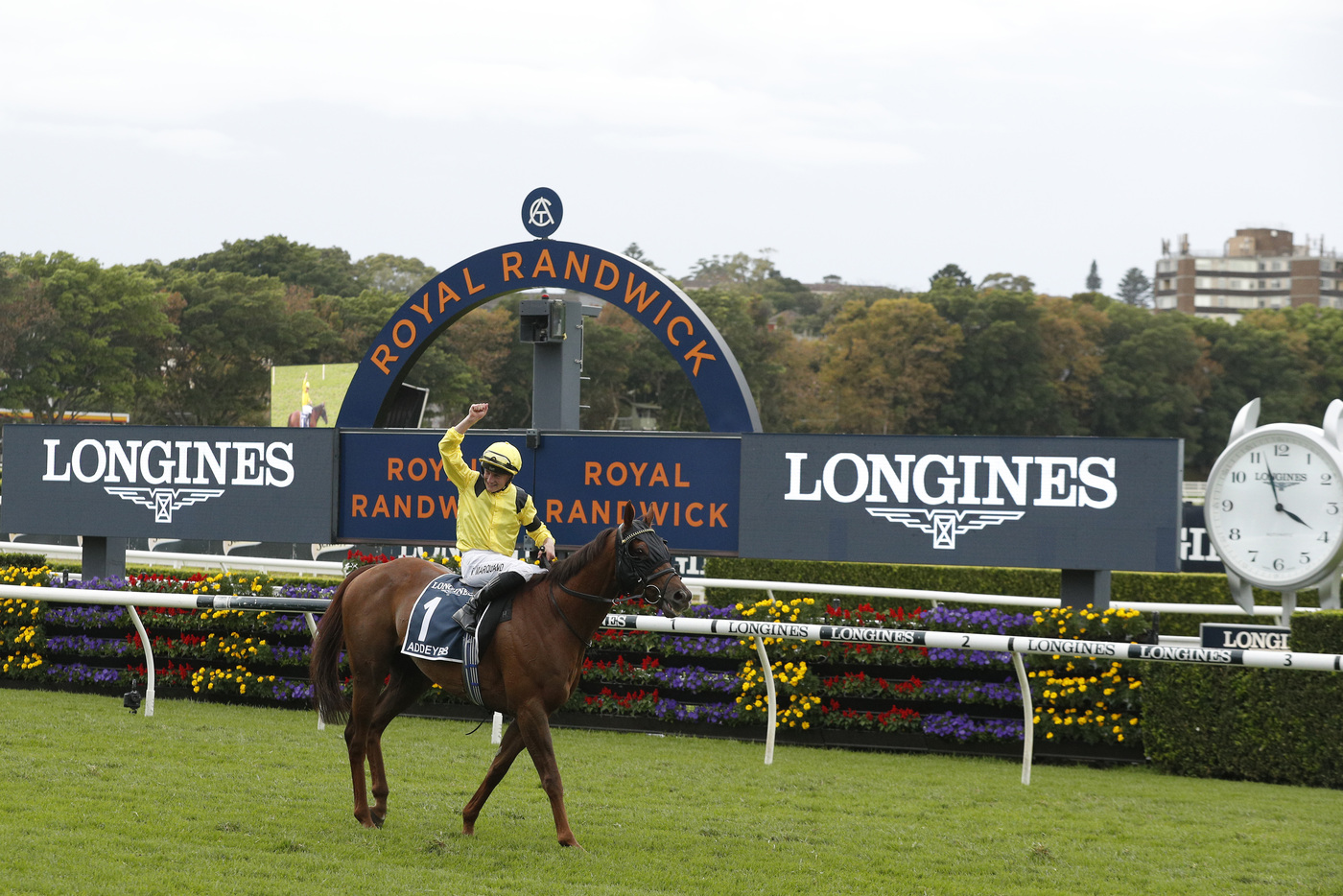 Longines Flat Racing Event: Longines timed the victory of Addeybb in the Longines Queen Elizabeth Stakes 1