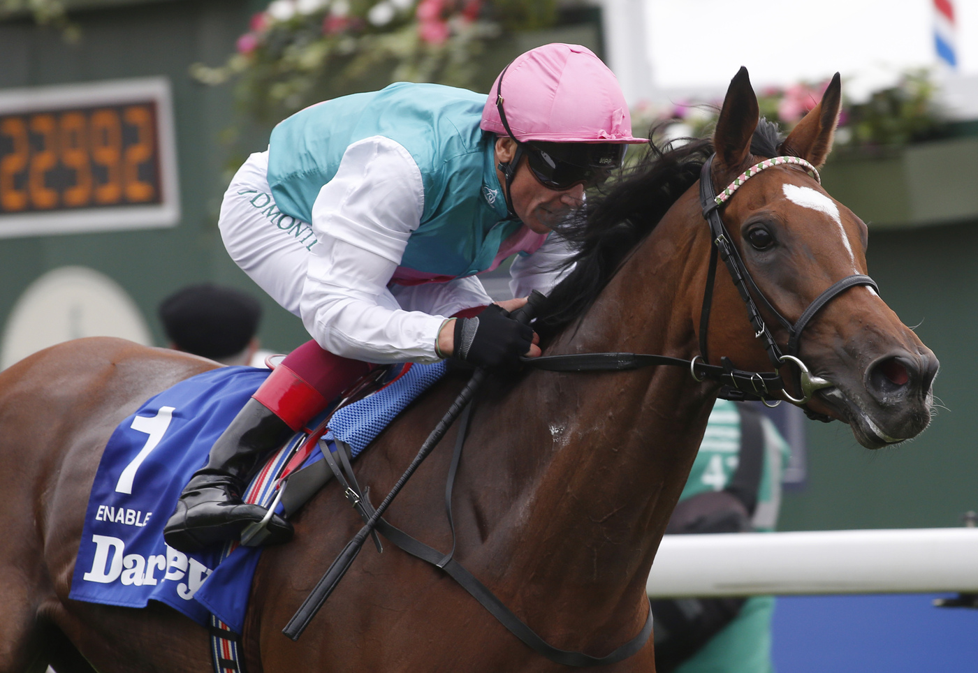 Longines Flat Racing Event: Crystal Ocean, Enable and Waldgeist crowned the 2019 Longines World's Best Racehorses, Qatar Prix de l'Arc de Triomphe named Longines World's Best Horse Race for the fourth time 5