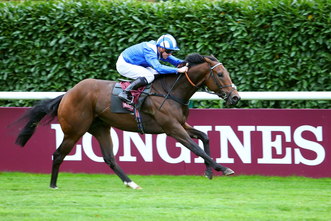 Longines Flat Racing Event: Longines' precision served the prestigious Qatar Prix de l'Arc de Triomphe 5