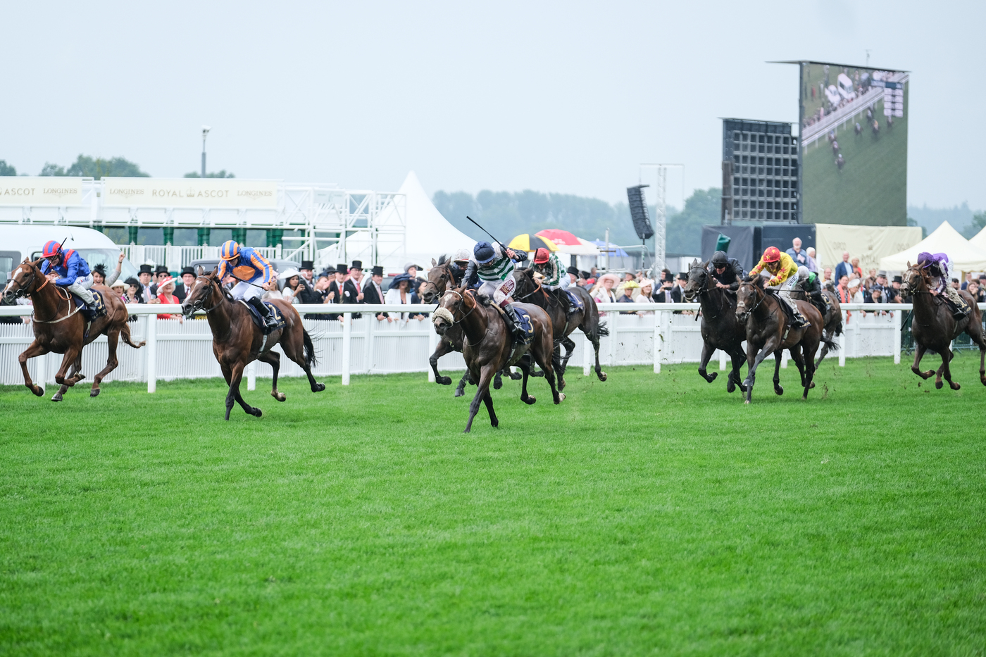 Longines Flat Racing Event: Longines celebrates elegance at Royal Ascot with Chi Ling Lin 14