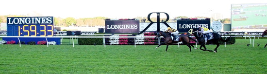 Longines Flat Racing Event: 2014 edition of the Longines Queen Elizabeth Stakes Raceday with the presence of Simon Baker 4