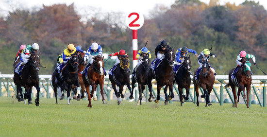 Longines Flat Racing Event: Australian victory at the 37th Edition of the Japan Cup in association with Longines  1