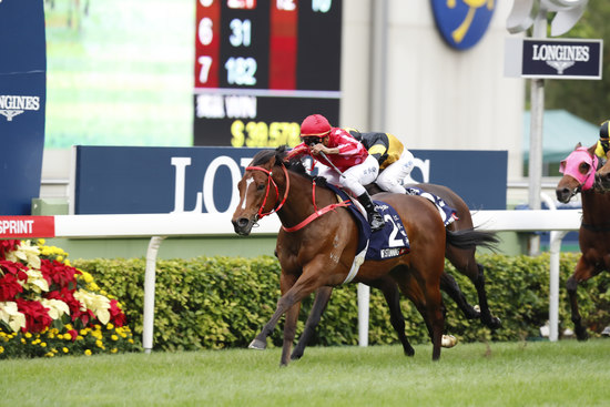 Longines Flat Racing Event: The Longines Hong Kong International Races:  four races, four chances to become a legend 6