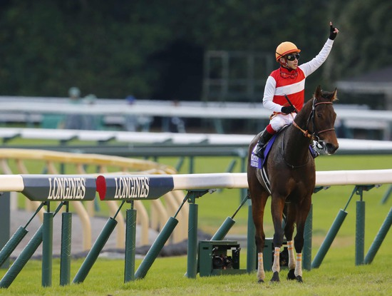 Longines Flat Racing Event: 2015 Japan Cup in association with Longines won by Shonan Pandora 4
