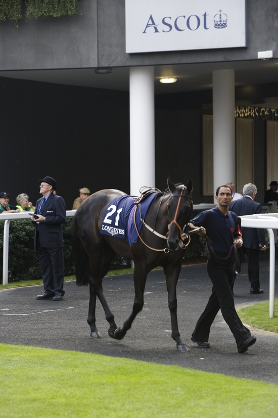 "Longines Flat Racing Event: Longines announced as ""Official Timekeeper at Ascot"" & Royal Ascot 2009 7"