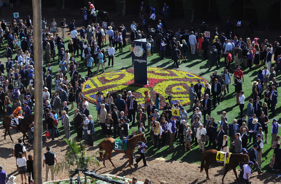 Longines Flat Racing Event: Swiss Watch Brand Longines Times 2017 Breeders' Cup World Championships at Del Mar 13