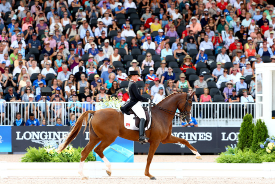 Longines Eventing Event: Performance at its peak during the first week of the  FEI World Equestrian GamesTM Tryon 2018 9
