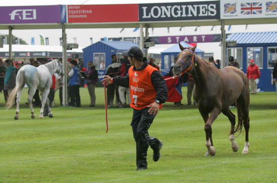 Longines Endurance Event: Longines FEI World Endurance Championships at Euston Park 3